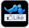 FB, Twitter, Linked-­in, Myspace integration right inside the app
